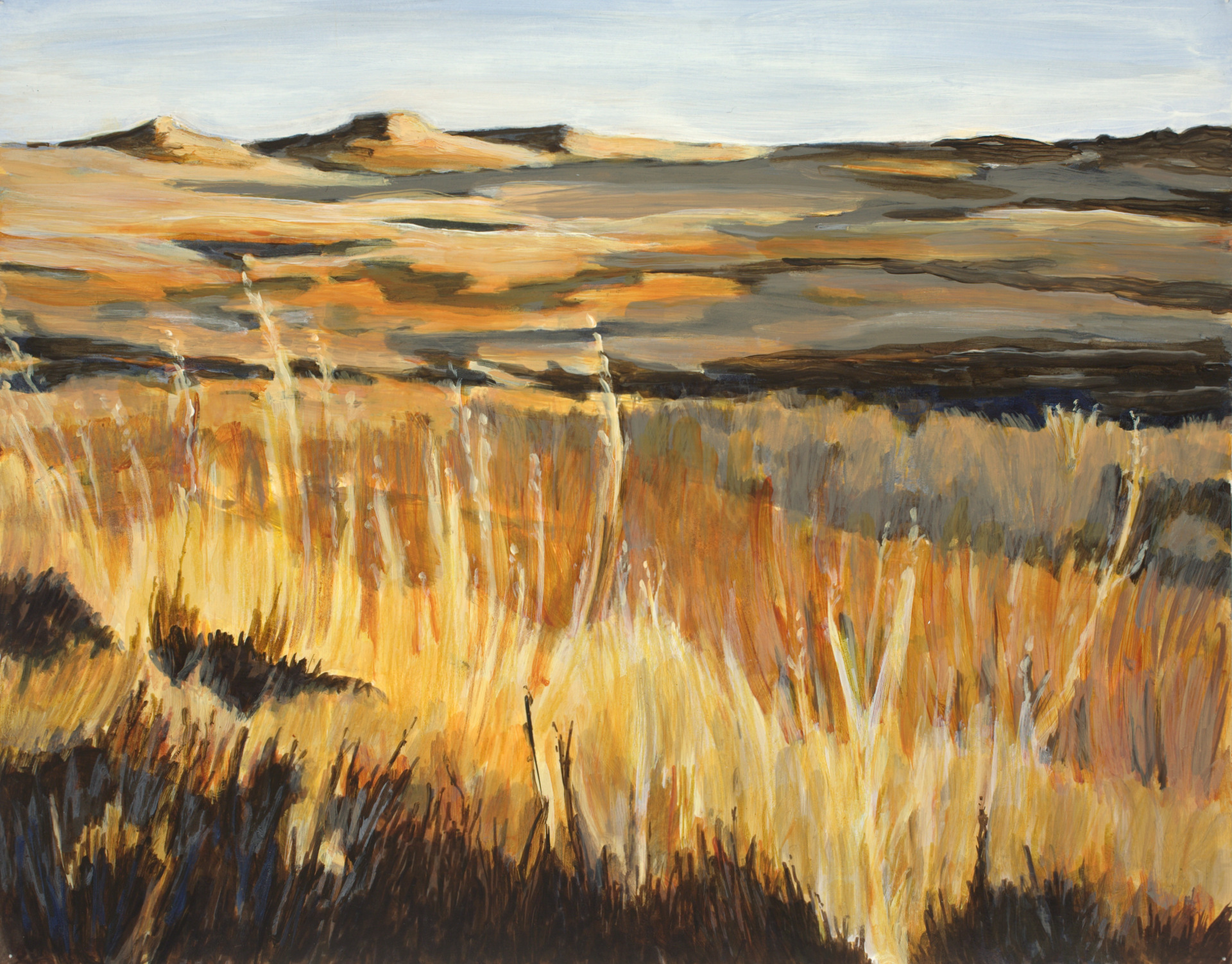 Late Afternoon in the Fossil Beds-11x14 (17x21 with mat, frame & plexiglass)